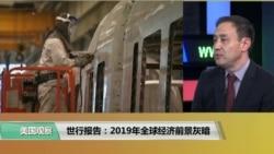 VOA连线(萧洵):世行报告:2019年全球经济前景灰暗
