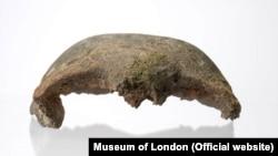 نمای جلوی بخشی از جمجمه ۵۶۰۰ ساله - موزه لندن، ۲۰ فوریه ۲۰۱۹
