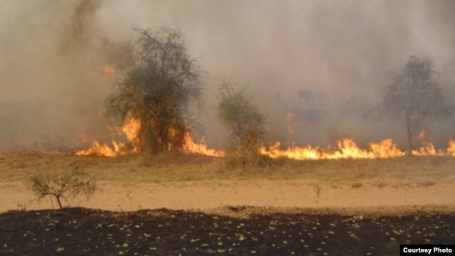 African savannah wildfire  (Credit: World Agroforesrtry Center)