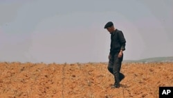 가뭄으로 말라버린 밭을 둘러보는 북한 농부 (자료사진)