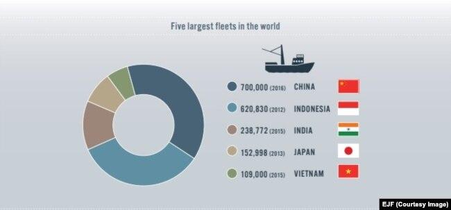 Việt Nam đứng thứ 5 thế giới về số lượng tàu cá đánh bắt ngoài khơi. (EJF)