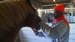 Innovative Program Gives Men and Horses a Second Chance