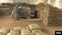 Los agricultores de los países en desarrollo se quejan de la injusta situación subsidiaria.
