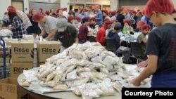 미국 버지니아주 센터빌의 '와싱톤중앙장로교회(KCPC)' 교인들이 북한 어린이들에게 보낼 영양쌀을 포장하고 있다.