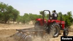 A farmer plows the field in Saulawa village on the outskirts of Kaduna.