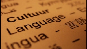 Photo illustration of amber paper with the words Cultuur and Language