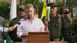 Santos anuncia mayor decomiso de coca en historia de Colombia