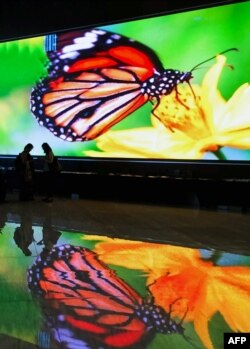 Attendees walk in front of a huge screen showing an image of a monarch butterfly image during the COP13 to the Convention on Biological Diversity in Cancun, Mexico, Dec. 2, 2016.