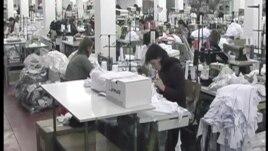 Problemi i punësimit në rajonin e Shkodrës