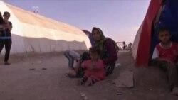 Год с момента авиаударов по позициям ИГИЛ
