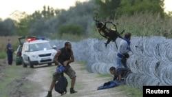 Policías húngaros observan a migrantes sirios ingresando ilegalmente por una cerca en la frontera entre Hungría y Serbia