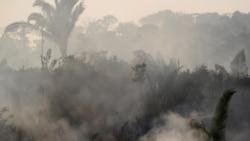 Jair Bolsonaro, sous forte pression, a même envisagé l'envoi de l'armée en Amazonie