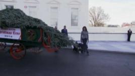 Pema e Krishtlindjeve në Shtëpinë e Bardhë