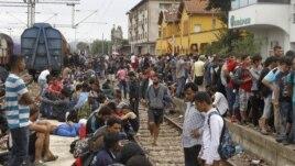 Emigrantët turren për të kaluar kufirin