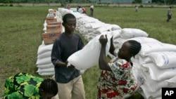 Distribution d'aliments aux déplacés dans la ville de Rutshuru, à 70 km au nord de Goma, dans l'est du Congo, 14 novembre 2008. (AP photo / Karel Prinsloo)