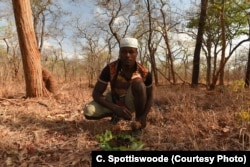 A Yao honey hunter presents a wax honeycomb to honeyguide on a bed of leaves
