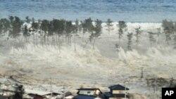 日本發生地震和海嘯後調查發現嚴重影響市民生活。