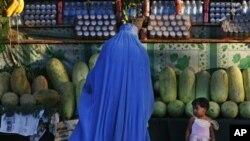 دو پروژه بزرگ زراعتی در ولایت هرات تهداب گذاری گردید