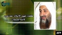 Trong thông điệp dài 12 phút đăng tải trên các website Hồi giáo, bin Laden ca ngợi các phong trào biểu tình tràn qua khắp Trung Đông