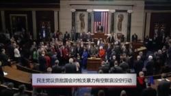 民主党议员批国会对枪支暴力有空默哀没空行动