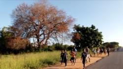 Crianças abandonam escolas no Namibe devido à seca -2:40