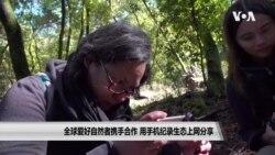 全球爱好自然者携手合作 用手机纪录生态上网分享