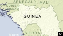 Guinea Arrests 100 Soldiers