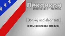 «Ослы» и «слоны»