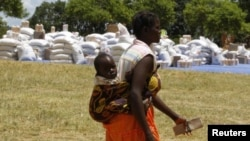 Building Resilience Against Hunger