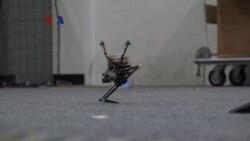 Robot Mandiri Yang Bisa Melompat