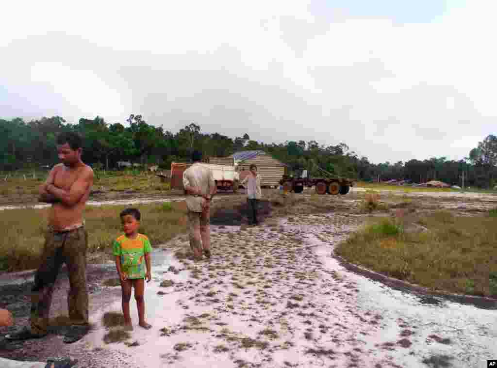 ເຂດນຶ່ງຂອງບໍລິສັດຕັດໄມ້, ວັນທີ 27 ເມສາ 2012. (Kong Sothanarith/VOA)