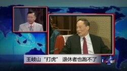 """媒体观察:王岐山""""打虎"""",退休者也跑不了"""