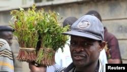 Un vendeur marche avec une plante, une khat, à Nairobi, le 10 juillet 2013.