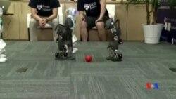 2014-06-18 美國之音視頻新聞: 美國科技專業學生備戰機器人足球冠軍賽