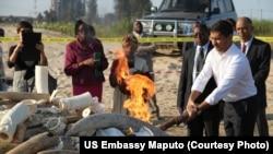 Ministro Celso Correia ateando o fogo que destruiu presas de elefante e cornos de rinoceronte