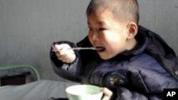 춘궁기 북한의 영양 섭취