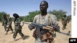 سودان کنترل یک منطقه تحت سلطه شورشیان دارفور را بازپس گرفت