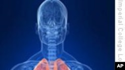 科技脉动:新流感病毒能深入肺部或造成严重病情