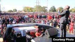Amai Vimbai Tsvangirai Java