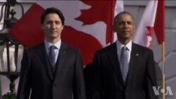 加拿大总理访美 赞美加关系举世无双(1)