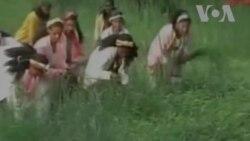 Aseesaa- Sirba Qaameetti Shamarran Sirban