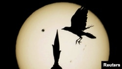 A reflection of Venus passing the sun is projected on paper Wednesday at the University of Bahrain