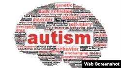 Nuevas investigaciones buscan relaciones entre los neurocircuitos que interfieren en la comunicación en personas con autismo y\o depresión.