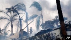 A firefighter stands under windswept palm trees as he hoses down smoldering debris in Ventura, Calif., Dec. 5, 2017.