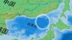 """韩裔美国人对""""日本海""""说不"""
