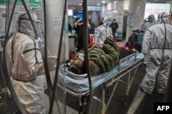 Medical staff members wearing protective clothing to help stop the spread of a deadly virus which began in the city, arrive with a patient at the Wuhan Red Cross Hospital in Wuhan on January 25, 2020.