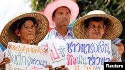 泰國農民在曼谷郊外舉著標語抗議,要求總理英祿解決按照稻米補貼項目應該發放給他們的款項。(2014年2月6日資料照)