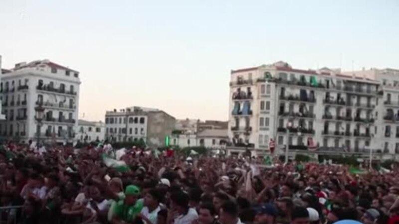 CAN-2019: les Algériens célèbrent la qualification en finale