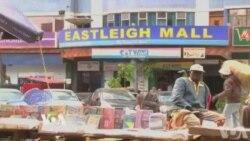 Eastleightwood contre les stéréotypes