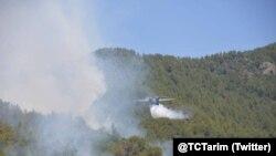 Arşîv: Derketina şewatê li daristanên Tirkiyê